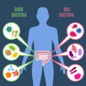 Role of Probiotics in the prevention & treatment of Cancer